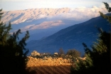 View of Mount Lebanon from the Ksara winery
